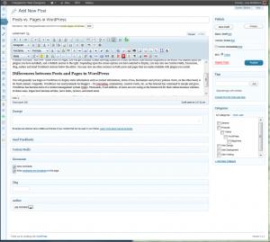 Add New Post screen in WordPress