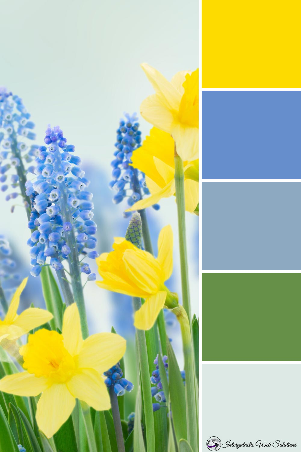 Daffodils and Hyacinth Palette